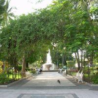 Jardín Núñez, Колима
