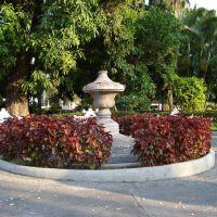 Jardin Nuñez, Колима