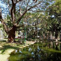 Jardin Hidalgo, Колима
