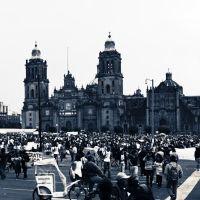 México exige ¡Verdadera Democracia!, Текскоко (де Мора)