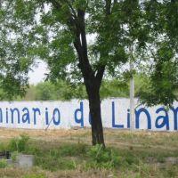 Carretera 85  Linares 3, Линарес