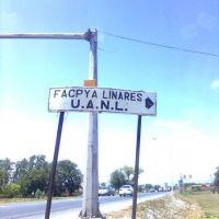 A FACPYA LINARES UANL, Линарес