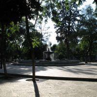 Parque Juarez o El Llano, Хуахуапан-де-Леон