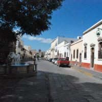 Avenida Juan de Tolosa, Zacatecas, Закатекас