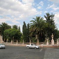 A public garden with lush vegetation, Закатекас