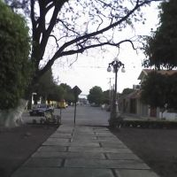 Jacarandas, Риоверде