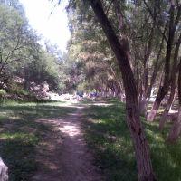 El rioverde, parque2, Риоверде