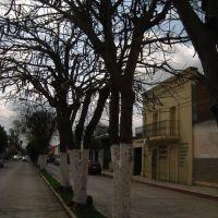 Imagen de calle Heroes Potosinos, Риоверде
