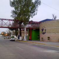 Colibri, Риоверде