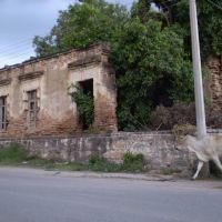 Antigua Casa Entrada a Baburia, Кулиакан