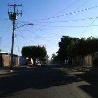 Ignacio Pezqueira / Coahuila y Zacatecas, Сьюдад-Обрегон