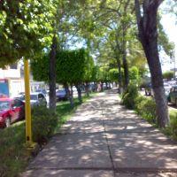 Andador del boulevard carlos pellicer, Макуспана