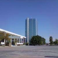 Torre Gubernamental (Palacio de Cristal), Риноса
