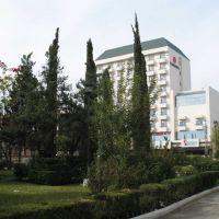 Hotel Ramada/Daddys/Howard Jonhson/Everest ¡decídanse! Plaza Hidalgo Cd. Victoria, Риноса