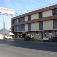 Refaccionaria Avalos Stoever, S. A. de C. V., Риноса