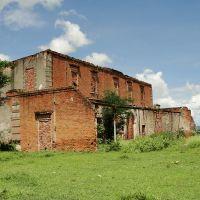 Ruinas de la Hacienda la Esperanza, Амека