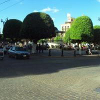 Centro Arandas, Арандас
