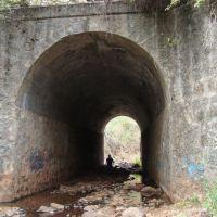 Puente sobre el rio, Атотонилко