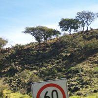 (60 km/h) Cerro junto a la carretera, Атотонилко