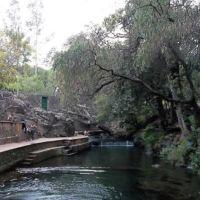 Parque Taretan, Атотонилко