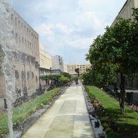 Plaza Tapatia, Гвадалахара
