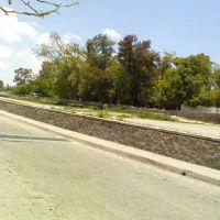 Vista del Jardin Agustin Rivera desdel la otra Banda, Лагос-де-Морено
