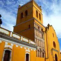 Templo de Santo Domingo en Comitán, Комитан (де Домингес)