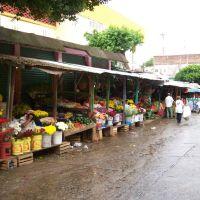 Mercat de Flors de Tonalà-Chiapas-Méxic., Тонала