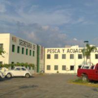 Secretaria de Pesca y Acuacultura, Тонала