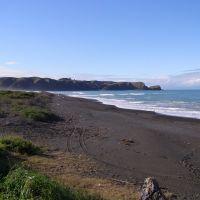Whirinaki Beach and Tongoio Bluff, Напир