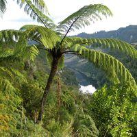 River Road lookout at Wanganui River, Вангануи