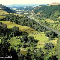 NEW ZEALAND, WHANGANUI - Whanganui river taken from a shell-rock bluff near Koriniti, Вангануи