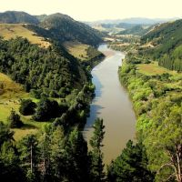 NEW ZEALAND, WHANGANUI - Whanganui river, Вангануи