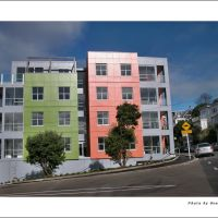New coloured flats, Веллингтон