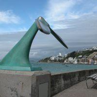 Whale tail, Веллингтон