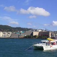 New Zealand - Wellington - Te Papa, Ловер-Хатт