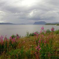 Tunnsjøen, Боде