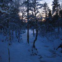 Kald vinterdag i Molde Marka, Молде