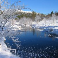 Vinter i Moldemarka., Молде