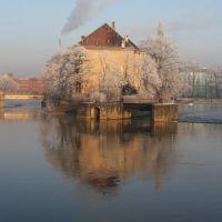 Zimno, Вроцлав