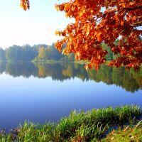 Jesień w lustrze wody, Вроцлав ОА