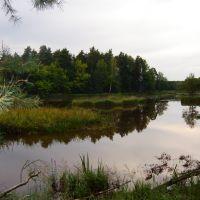 Zalew Klików, Желеня-Гора