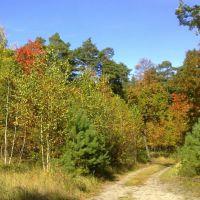 Jesień, Желеня-Гора