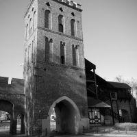 Wrocław Gate, Олесница