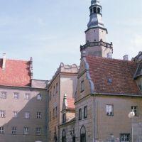Zamek w Oleśnicy (www.zamki.pl), Олесница