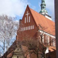 Bazylika Mniejsza p.w. św. Jana Apostoła, Олесница