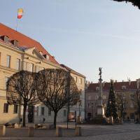 Drzewka, Олесница