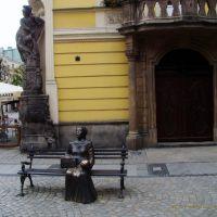 Świdnica - Rynek, Свидница