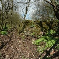 Pozostałości zamku w Małej Nieszawce (www.zamki.pl), Торун