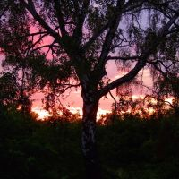 Sunrise in Mostki, Заган